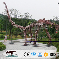 2016 Vivid Life Size Replica Dinosaur Fossils For Sale