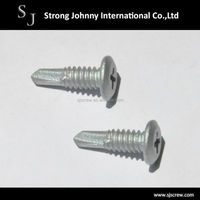 Taiwan cheap steel phillips round washer head blue zinc self drilling screw