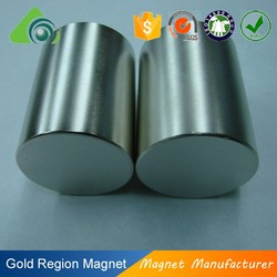 rare earth neodymium monopole magnet disc magnet for sale