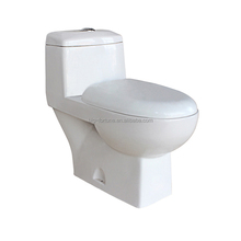 Sanitary Ware Accessory Washdown Indian Type Water Closet
