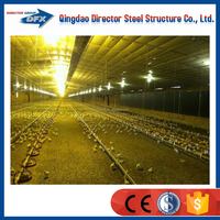 China alibaba chicken egg layer house manufacture