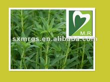 Natural Stevia Extract& Stevioside, Rebaudioside with Good qality