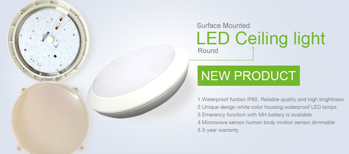 New design 15w ceiling light, ip65 shower ceiling light, Surface mounted bathroom ceiling light for hotel