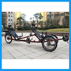 Three Wheeled Team Dual Seat Adult Tricycle