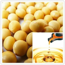 Factory wholesale Soybean oil 95% Phytosterol