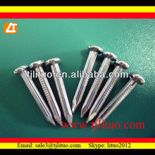 steel C45 good quality white zinc fluted shank Hardened steel Concrete nails blue steel concrete nails