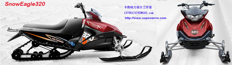 250cc Engine Capacity and 4 Stroke Engine snowmobile (Direct factory)
