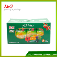 Full printed small juice carton with handle