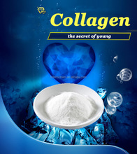 cosmetics bovine fish collagen