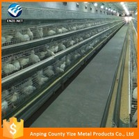 hot sale new product eggs bird layer cage equipment