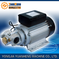 "Micro electric gear type oil pump for oil transfer / Auto electric gear oil pump / 1"" Electric gear oil pump AC 220V"