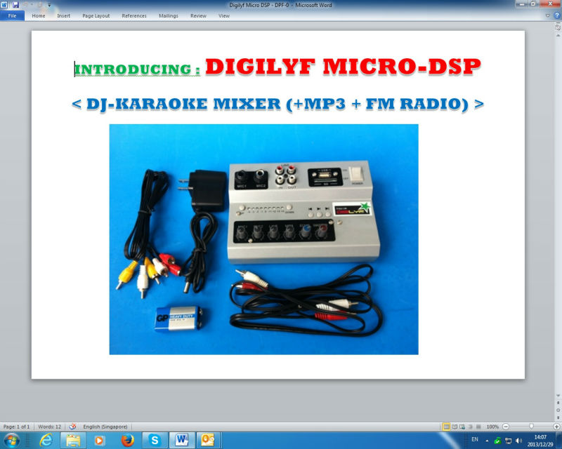 DigiLyf MP3 Player + FM Radio + 2 Mic input