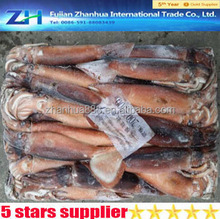 types of seafoods name squid, cleaning products illex squid from china wholesale