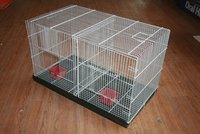 Bird cage double collapsible
