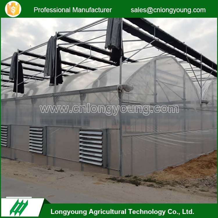 New style easy assembly multifunctional agricultural tunnel greenhouse