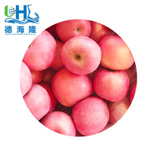 Chinese fresh fuji apples famous brand
