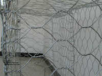 pvc coated gabion basket /galvanized gabion box / gabion wire mesh(factory)