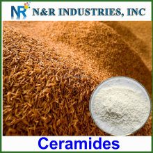 104404-17-3 ceramide 5% 10% natural food additives