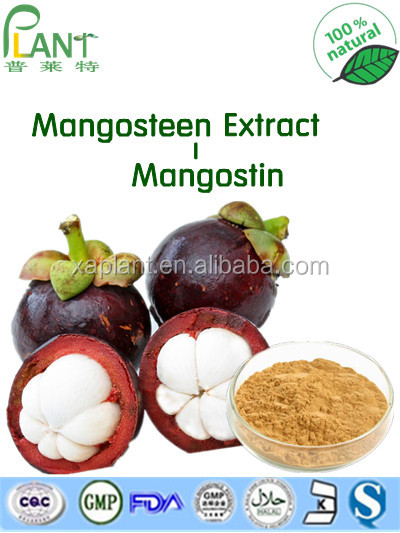GMP Manufacture 100% Natural Mangosteen Powder Extract/Mangosteen Rind Extract Powder