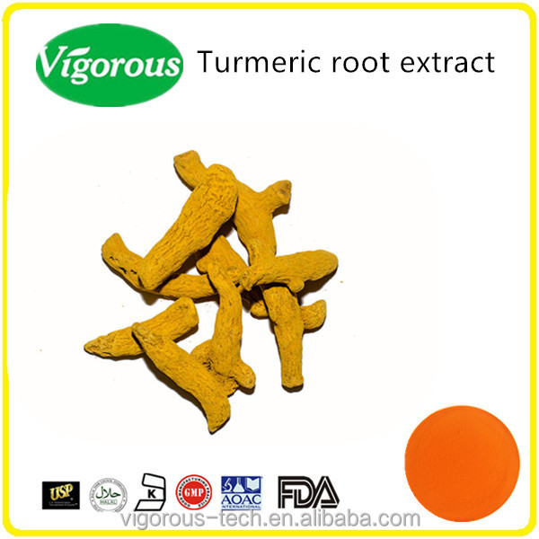 Organic turmeric root extract/pure natural turmeric powder/95% curcumin pure turmeric extract