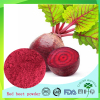 Chinese Traditional Medicine red beet root extract powder , betaine hcl powder