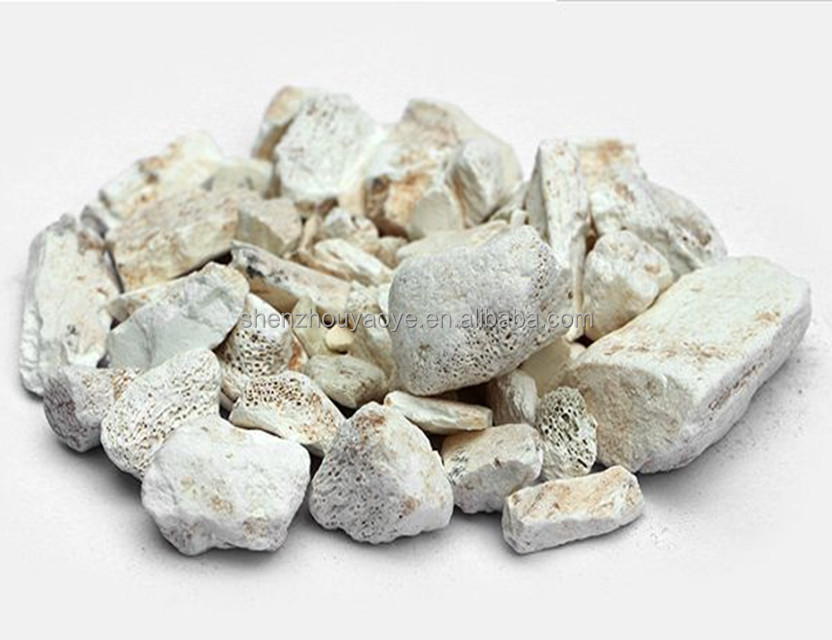 Dried herbal Medicine for bones /Wholesale Herb Chinese Medicine Dragon Bones/Fossilizid