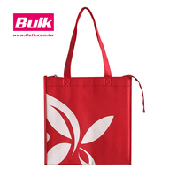 Simple and Professional Non Woven Lunch Cooler Bag Woven