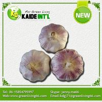 High Quality Bulk Natural Garlic For Sale