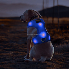Pet supplies colorful mesh harness rechargeable led dog harness wholesale