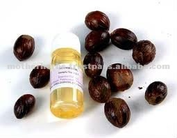 Nutmeg Essential Oil For Spicy Fragrance & Perfumes