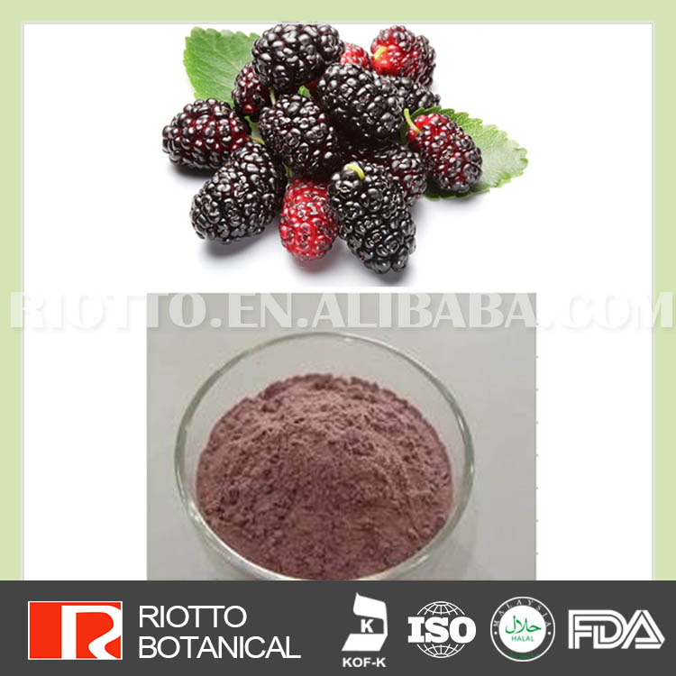 Organic 100% Natural Mulberry fruit flavor powder