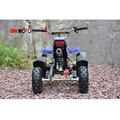 chinese CE certification so cool kids 50cc gas engine / powered ats/atvs