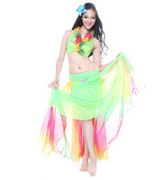 Chiffon and Spandex Belly Dance Costume, Adult Belly Dance Wear , Sexy Belly Dance Costume
