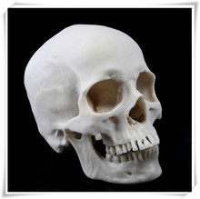 2014 hot new produets wholesale masks face skull