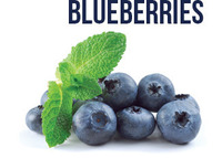 Blueberry / Fresh and Frozen ( IQF )