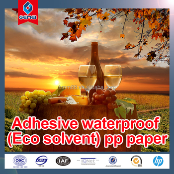 High Quality Adhesive Eco-solvent Matt PP Paper