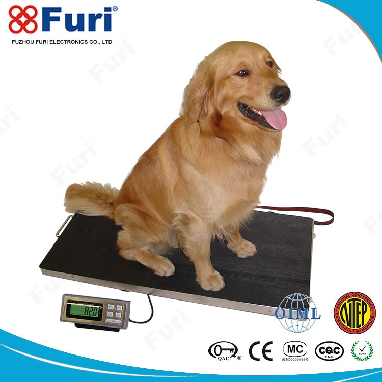 Lightweight Poultry 300kg/100g 150kg/50g weighing scales electronic