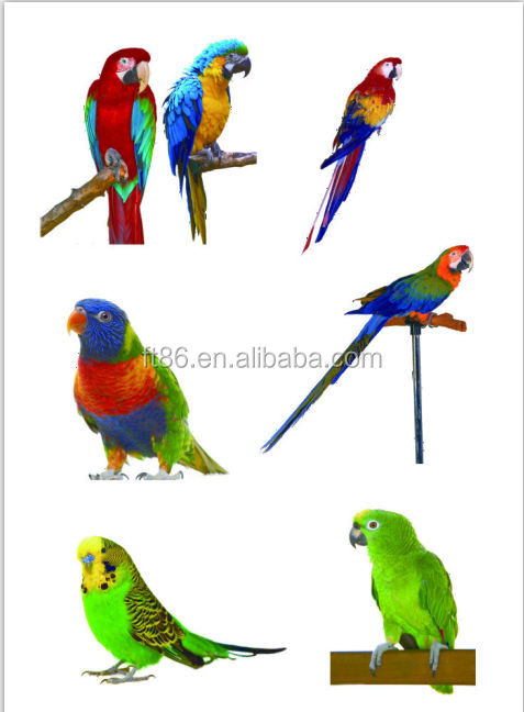 2014 hot sale new spring beautiful realistic handicraft small artificial birds