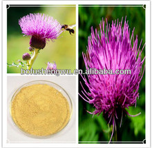 Chinese herb medicine: milk thistle extract