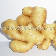 Chinese Organic Fresh Ginger