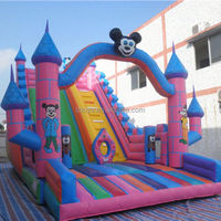 new inflatable slide ship , NO.1069 super quality cartoon worm inflatable slide