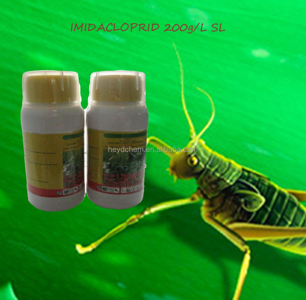 Insecticide 138261-41-3 200g/l SL Imidacloprid Insecticide