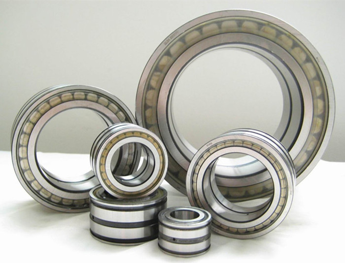 Cylindrical roller bearings, double row, full complement 1