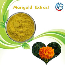 LanBing supply calendula officinalis flower extract calendula officinalis marigold flower extract
