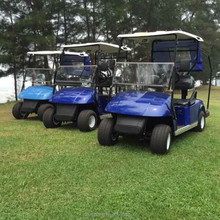Best price 2 Seaters Gas Powered Mini Golf Carts for sale