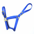 COB synthetic pvc horse racing halter