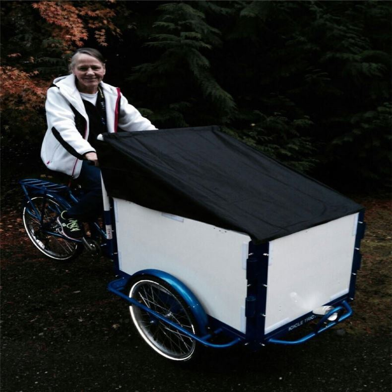 Electric Power For Front Cargo Cheap Tricycle