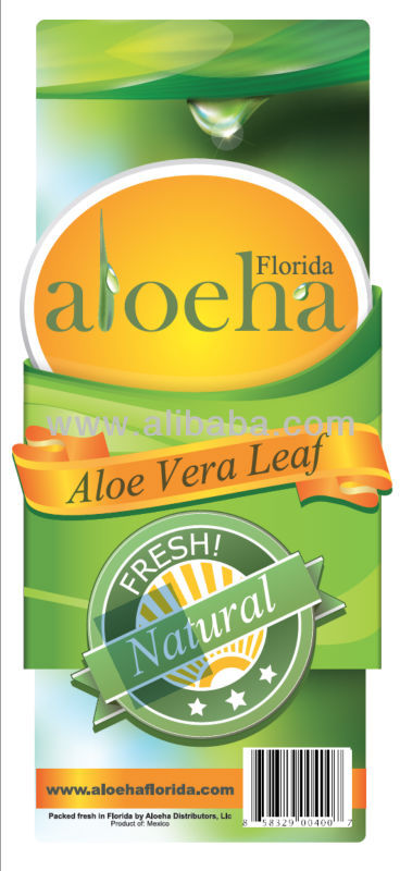 Aloe Vera. Business opportunity.