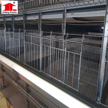 China Factory Design Poultry Equipment Breeder House Chicken Bird Breeding Cage