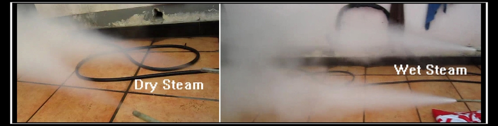 Automatic Industrial Steam Cleaner